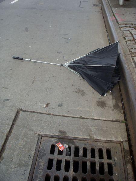 Umbrella 4
