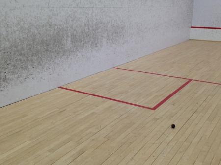 squash-art-1